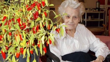Residents at Cornwallis Court grew chillies as part of World Food Day. Picture: RM