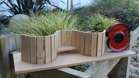 A scaled down model of the serpentine bench and poppy