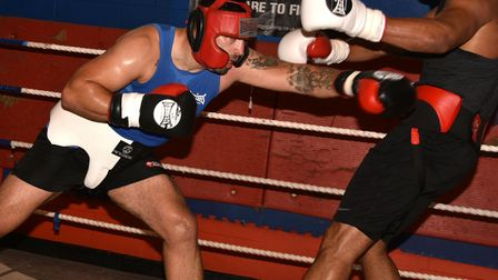 Sam Sexton lands a jab to Fabio Wardley's stomach during sparring. Picture: SONYA DUNCAN