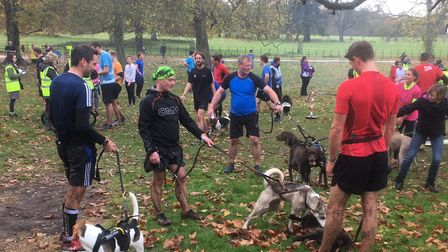 A selection of the dogs, with their owners, who reached the finish of the Wimpole Estate Parkrun ahe