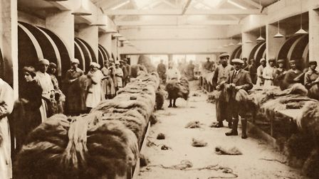Flax bundles to be heckled - combed to make the fibres straight, ready for spinning. Picture: AMBERL