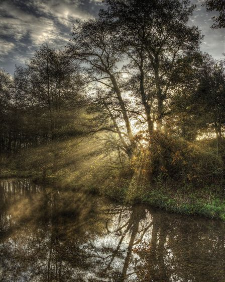 A remote corner on the edge of the Brecks. Picture: NICK FORD