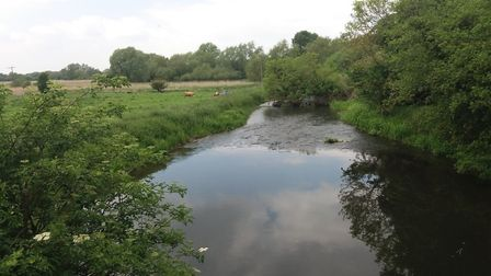 A stretch of the River Lark in the Brecks. Picture: CLAIRE DICKSON