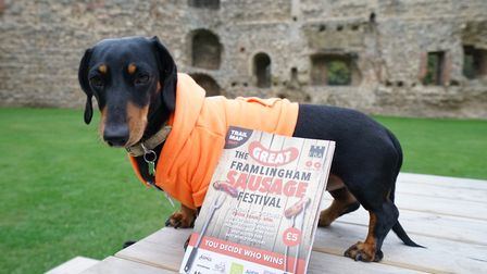 Teddie the Framlingham Sausage Festival mascot. Picture: Tony Pick's Photography