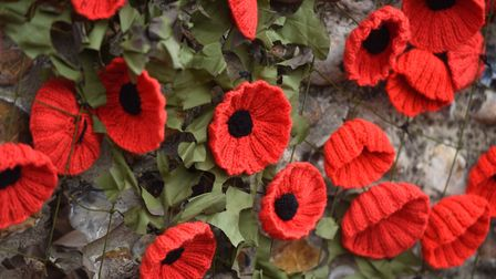 Over 5000 poppies have been used in the yarn bomb in Walsham le Willows. Picture: GREGG BROWN