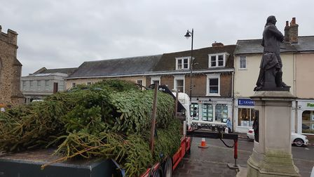 The tree for Sudbury before it was unloaded from the truck - described as looking like it had been t