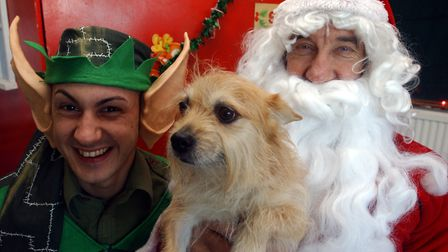 Take part in the annual RSPCA Suffolk East and Ipswich branch's Christmas fair. Picture: JAMES FLETC