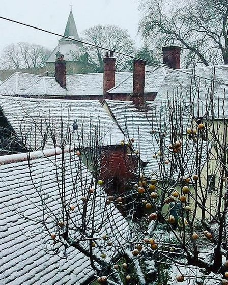 Rooftops of Wethersfield, Essex covered insnow. Picture: Kelleyann Phythian
