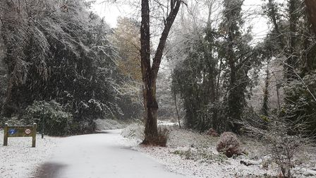 Holywells Park covered in snow. Picture: Matthew Stott