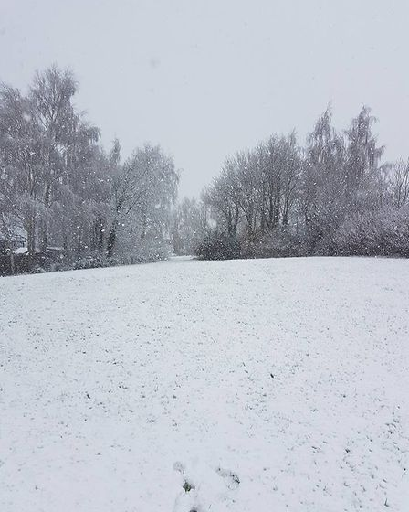 Snowing at Hadleigh, Suffolk. Picture: Kelly Webb