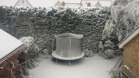 Snow is falling heavily in Great Leighs, Essex. Picture: NATALIE SADLER