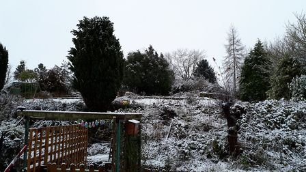 Snowy picture looking out to our garden in Kettleburgh. Picture: Nicky Hill