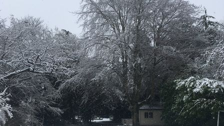 A snowy scene in Rushmere, Ipswich. Picture: TERRY HUNT