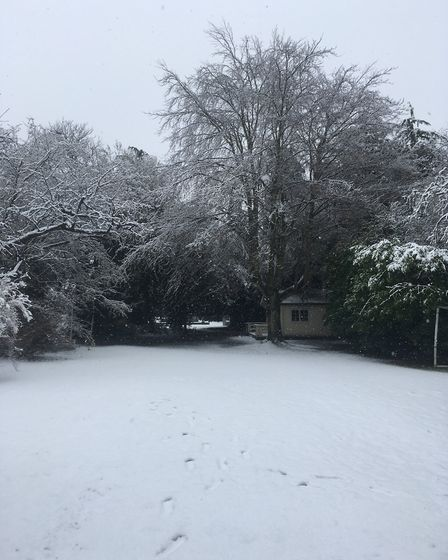 A picture postcard view of a snow-covered garden in Rushmere. Picture: TERRY HUNT