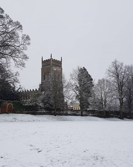 Beautiful scenes from Christchurch Park, Ipswich. Picture: ADRIAN MEE