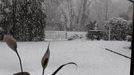 Snow arrives in Hitcham near Ipswich. Picture: Andrew Mutimer