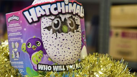 One of the top toys this Christmas, Hatchimals. Picture: DENISE BRADLEY