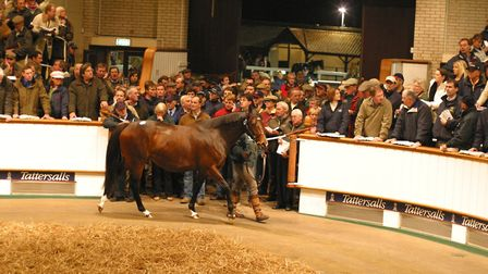 A file picture of the Tattersalls sale ring.