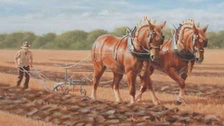 Ploughing a Straight Furrow by Frances Sullivan