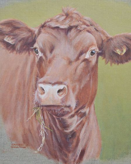 Red Poll by Frances Sullivan