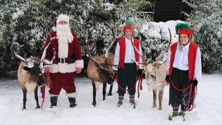 Father Christmas with his elves and reindeer in the snow at Colchester Zoo. Picture: CONTRIBUTED