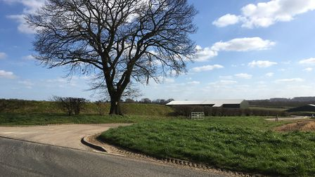 The planned future site of the West Suffolk Operational Hub, pictured from Fornham Road, where the e