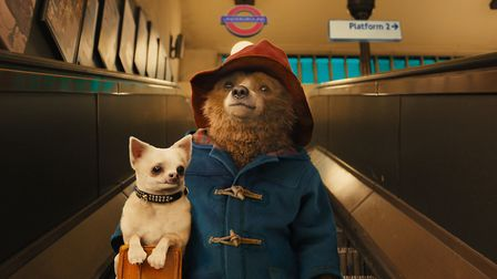Have you seen Paddington 2? Picture: PA/ STUDIO CANAL