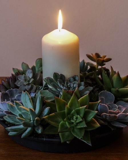 Undated Handout Photo of a succulent centrepiece. See PA Feature GARDENING Cacti. Picture credit sho