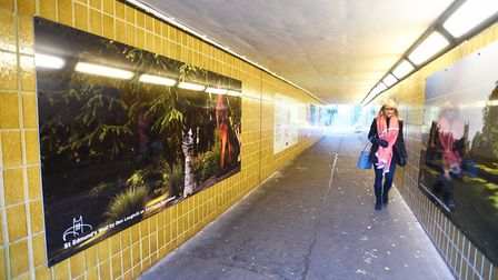 Large artworks have been installed in the underpass between the Arc car park and Cineworld in Bury S