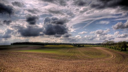 A stunning example of a stunning landscape - part of the Brecks under a dramatic sky. Picture: NICK