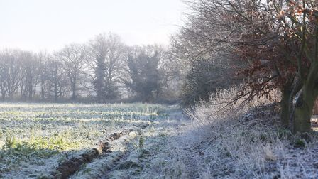 A frosty morning in Kesgrave. Picture: LUCY TAYLOR