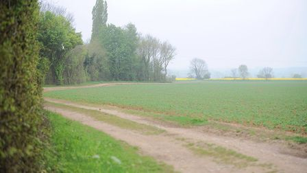 Countryside view of Great Bricett, the location of an overnight crime spate. Picture: ARCHANT LIBRAR