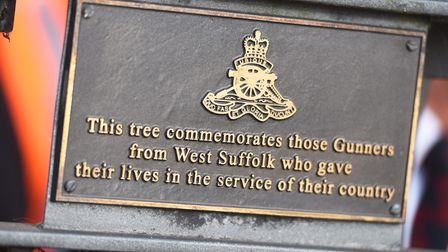 Plaque to accompany tree planting on Angel Hill in Bury St Edmunds. Picture: GREGG BROWN