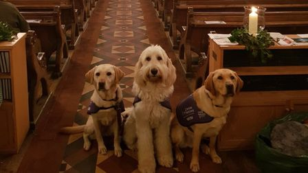 The first ever East of England Canine Partners carol service has raised more than £13,000. Picture: