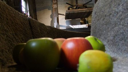 Inside the production facility at Aspall. Picture: Joseph Shields
