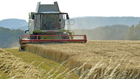 The All-Party Parliamentary Group on Agroecology has warned that trade deals after Brexit could pose