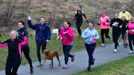 Runners, joggers and dogs enjoyed their morning in Great Notley Country Park. Picture: MIKE ELDRED
