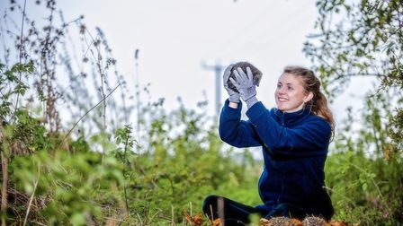 Ipswich Hedgehog Officer Ali North with one of her beloved 'hogs'. Picture: JOHN FERGUSON/SUFFOLK WI