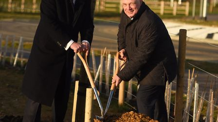 Councillor John Griffiths (left), leader of St Edmundsbury Borough Council planting the first tree a
