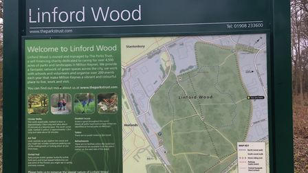 Linford Wood, the home of a parkrun in leafy Milton Keynes. Picture: CARL MARSTON