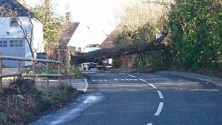 A tree blocked the Buxhall turn in Great Finborough, near Stowmarket. Picture: JIMMY MOORE