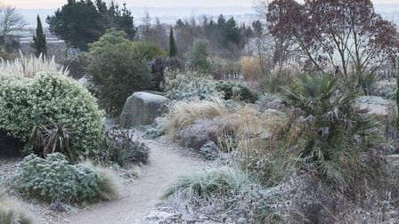 Undated Handout Photo of the dry garden at RHS Hyde Hall. See PA Feature GARDENING Advice Photo. Pic