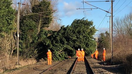 Overhead power wires and the posts that carry them were brought down between Diss and Norwich. Pictu