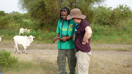 Field workers study turtle doves and their wintering habitats in Senegal in a project in which the R