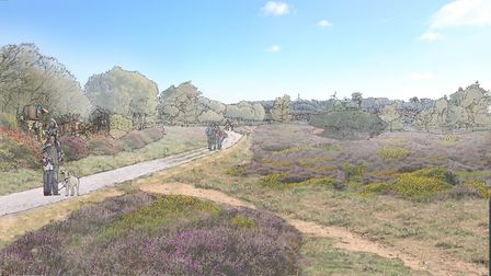 A view of the heathland included in the development. Picture: CEG