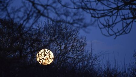 The super blue moon in Darsham. Picture: SIAN NEW