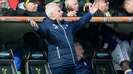 Mick McCarthy at Carrow Road on Sunday Picture Pagepix