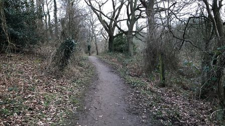 The pathway near to the Kelvedon Drive area, close to the Foxhall Stadium, where the attack took pla