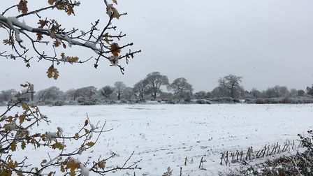The Beast from the East hit the region a fortnight ago. Picture: ADAM HOWLETT