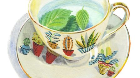1950s' Alfred Meakin china from the local auction... of course. Picture: MARY WOODIN